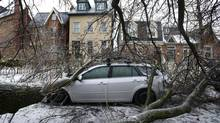 A tree limb rests on the roof of a car in the Cabbage Town neighbourhood following an ice storm in Toronto, Ontario, Monday December 23, 2013. (Kevin Van Paassen/The Globe and Mail)