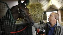 Trainer Mark Casse is photographed Sept 7 2011 during morning workouts at Woodbine Racetrack. (Fred Lum/Fred Lum/The Globe and Mail)