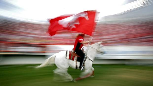 The Calgary Stampeders' touchdown hores, Quicksix, runs past the stands following a touchdown during first half CFL football action against the Edmonton Eskimos in Calgary, Alta., Monday, Sept. 2, 2013. (JEFF MCINTOSH/THE CANADIAN PRESS)