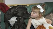 Pit bull Pandora in a family photo with its owner's niece, Aylah. (Family photo)