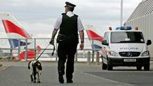A British police officer with a sniffer dog patrols at Heathrow airport. (TOBY MELVILLE/REUTERS)