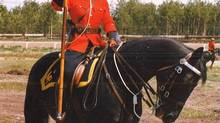 RCMP Staff Sgt. Caroline O'Farrell is shown in a handout photo from the law firm who is representing her. A Mountie who was once part of the famed Musical Ride is suing the national police force, alleging she was sexually assaulted, harassed, repeatedly doused in cold water and dragged through horse manure by colleagues. (THE CANADIAN PRESS)
