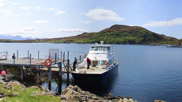 Tanera Mor, Scotland, in the Summer Isles, is a great destination for dolphin-watching tours.