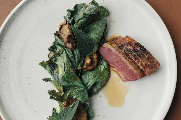 Roasted muscovy duck, glazed in persimmon and prickly ash, with grilled mustard greens and lepista irina mushrooms.