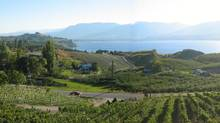 The survey says Penticton is becoming a year-round vacation hot spot with its beautiful beaches, a burgeoning wine industry and many outdoor activities. (Globe files/Globe files)