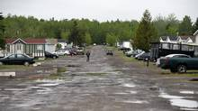Pioneer Ave. in a Moncton, New Brunswick trailer park where Justin Bourque lived after moving out on his own, photographed June 6 2014. (Fred Lum/The Globe and Mail)