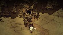 In one sense, Don't Starve is survival horror, because the dark world Wilson inhabits is certainly horrifying. This game isn't zombie or blood-and-guts horror, it's scary in the gothic sense of the term: strange and unnerving and just at the edge of familiarity. (Klei Entertainment)