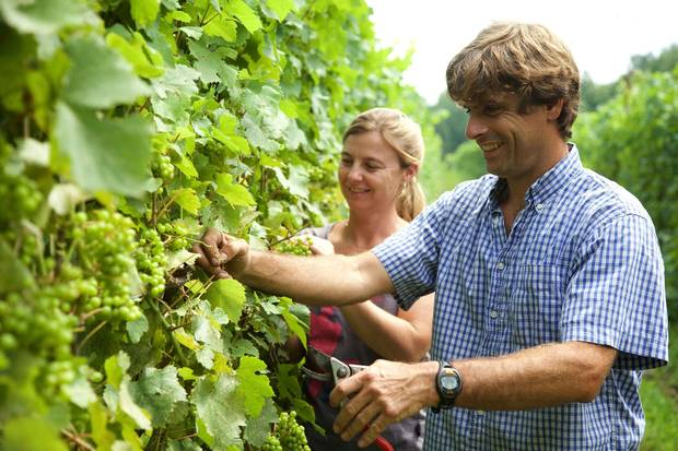 Véronique Hupin, left, and Michael Marler, right, owners of Les Pervenches winery.