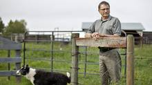 Alberta Premier Ed Stelmach, shown on his farm near Mundare, Alta, will be leaving office once a new Progressive Conservative leader is chosen. (Jason Franson for The Globe and Mail)