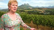 Alberta-born Norma Ratcliffe, a founder of Warwick Estate winery and a pioneer of the South African wine industry, in her vineyards near Stellenbosch, South Africa. (Erin Conway-Smith/Erin Conway-Smith/THE GLOBE AND)