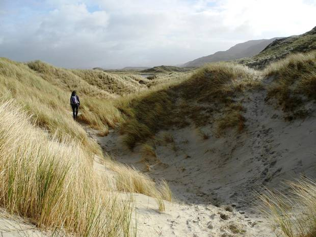 Cresting huge dunes of sea grass lead to the pristine white sand of Maghera beach, stretching unbroken for a mile along gnarly rock cliffs, riddled with caves, on the wild west coast of Donegal.