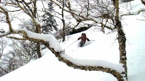 "Cutting through soft powder: ""smoky snow,"" as guide Noriyuki Watanabe calls it."