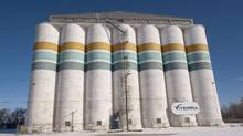 'Companies like Glencore have different avenues of marketing than Viterra has,' Agriculture Minister Gerry Ritz said on Monday. (Liam Richards/The Canadian Press/Liam Richards/The Canadian Press)