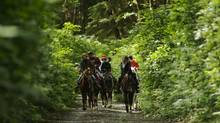 The Friends of Strathcona Park believe the Clayoquot Wilderness Resort's plan to create wide horse trails will limit hikers' ability to enjoy the area. (Handout/Clayoquot Wilderness Resort)