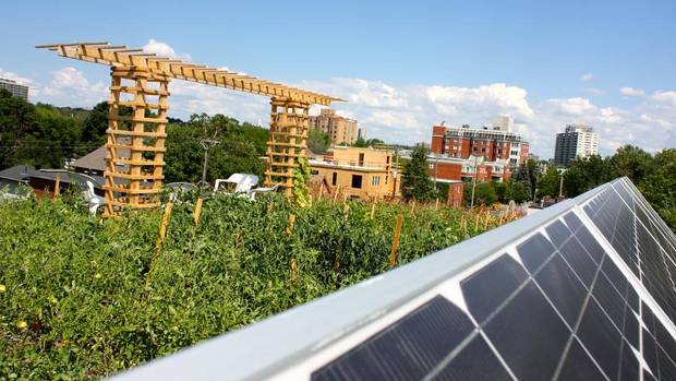 It's growing on us - more green roofs - The Globe and Mail