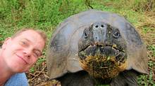 Testing the docility of a giant tortoise in the Galapagos Islands. (Marcus Stevenson)