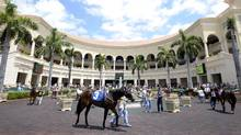 Florida's Gulfstream Park Racing and Casino is owned by Frank Stronach. (TIBOR KOLLEY/THE GLOBE AND MAIL/TIBOR KOLLEY/THE GLOBE AND MAIL)