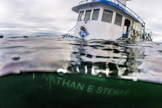 The tug boat Nathan E. Stewart is seen in the waters of the Seaforth Channel near Bella Bella, B.C., on Oct. 23, 2016.