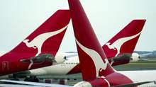 The tails bearing the logo of the 'Flying Kangaroo' of Qantas are seen at a terminal of Sydney Airport in this September 9, 2003 file photo. (WILL BURGESS/REUTERS)