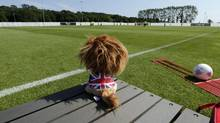 Brian the Lion, the mascot of the Great Britain women's soccer team, is displayed on a bench during a Great Britain soccer team training in Cardiff, Wales, at the 2012 Summer Olympics, Sunday, July 22, 2012, in London. (Luca Bruno/AP)