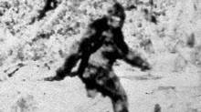 Photographers Roger Patterson and Bob Gilim made this image Oct. 20, 1967, during a horseback search in northern Califronai for Sasquatch or Bigfoot. (Associated Press)