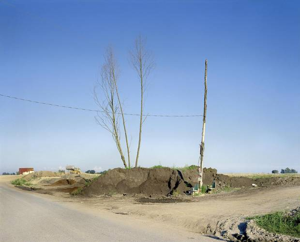 Roy Arden's Landfill, Richmond, B.C., 1991, depicts bare tree trunks reaching up to a blue sky from a sandy pile of waste.