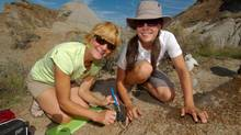 Alberta's Dinosaur Provincial Park offers guided excavation.