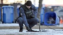 A Durham Regional Police officer and dog look for clues on the grounds of the apartment building at 101 White Oaks Court in Whitby hours after four people were shot there on Feb. 21, 2013. (J.P. MOCZULSKI/J.P. MOCZULSKI)