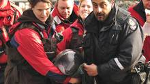 Vancouver Aquarium employees carry a porpoise named Siyay that was stranded off Saltspring Island and rescued by a hovercraft, in Vancouver, Tuesday, April 26, 2011. (John Healey/ The Canadian Press/John Healey/ The Canadian Press)