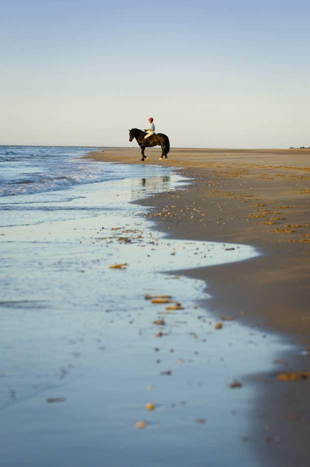 Holkham Beach in Norfolk.