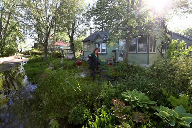 Alison Gzowski sloshes through the water around her home on Ward's Island.