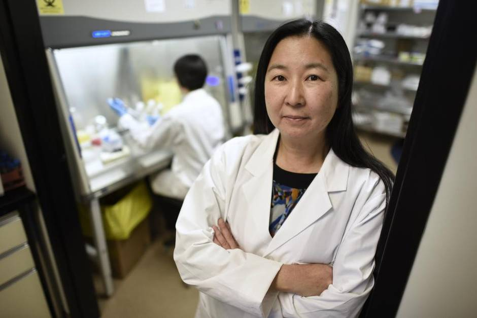 Scientists unleash the power of immunotherapy on stubborn cancers