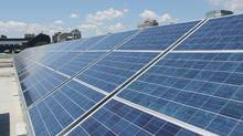 Solar panels are seen on the rooftop of the Larkin Building at the University of Toronto. They were installed by CarbonFree Technology Inc., a Toronto-based solar power project developer, under Ontario's feed-in-tariff program. (MAY JEONG/THE GLOBE AND MAIL)