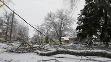 Tree limbs and downed hydro wires remain blocking Orchard Park Drive in Scarborough, on Wednesday December 25, 2013 in the aftermath of a large ice storm which hit the GTA on Saturday December 21, 2013. (Jon Blacker for The Globe and Mail)