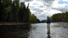A fisherman enjoys the Elk River, near Fernie. A University of Montana study found selenium, nitrate and sulphate levels in the Elk River were up to 5,000 times higher than in the nearby Flathead River, which doesn't get any run-off from coal mines. (Canadian Press)