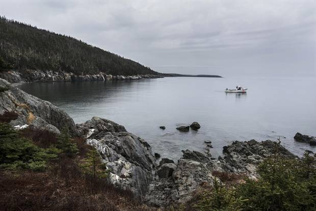 A boat idles in Fogarty's Cove on the Nova Scotia coast.
