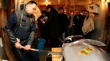 A market wholesaler cuts up a 232-plus kilogram bluefin tuna during the new year's first auction at the Tsukiji fish market on January 5, 2010 in Tokyo. (Koichi Kamoshida/2010 Getty Images)