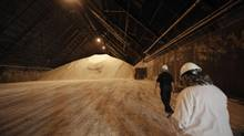 30,000 tonnes of raw sugar in the storage at Redpath Sugar's Toronto refinery. (Fred Lum/The Globe and Mail)