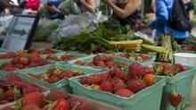 Riverdale Farm Farmers' Market (Kevin Van Paassen/The Globe and Mail/Kevin Van Paassen/The Globe and Mail)