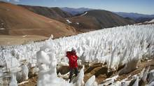 A man walks by the El Toro II glacier on the Chilean side of the border district between Chile's Huasco province and Argentina's San Juan province, a few kilometres from the site for the Pascua-Lama gold project, some 834 km northeast of Santiago. A ruling from a Chilean court to halt work on Pascua-Lama, the world's most ambitious gold project, marks a growing backlash against the industry in one of the world's most mining-friendly jurisdictions. (REUTERS)