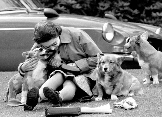 The Queen is shown sitting with her corgis in May, 1973.