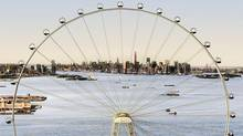 An artist's rendering of a proposed 625-foot Ferris wheel planned as part of a retail and hotel complex along the Staten Island waterfront in New York. (AP)