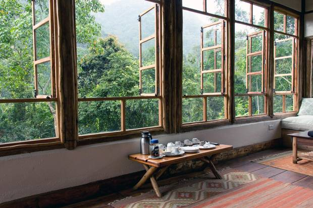 Looking out the window of Bwindi Lodge.