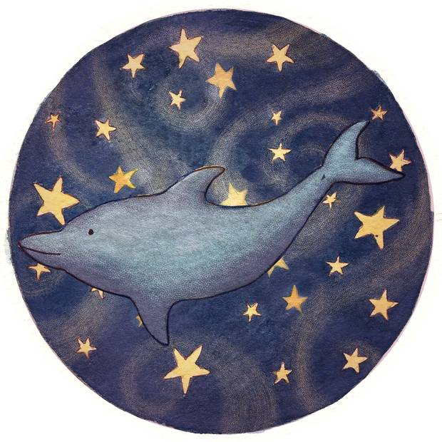 Dipper is an invisible flying dolphin who lives on a star, never sleeps and can fly very fast.