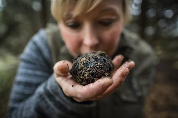 Brooke Fochuck takes in the smells of a fresh B.C. truffle near Vancouver.