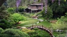 The Huntington Botanical Gardens in Pasadena (The Huntington Botanical Gardens)