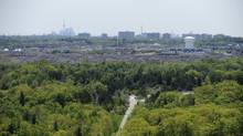 The high rise condos and apartment buildings near Kennedy Rd are seen in the distance beyond the forests of Rouge Park which is slated to become a national park. (Fred Lum/The Globe and Mail/Fred Lum/The Globe and Mail)