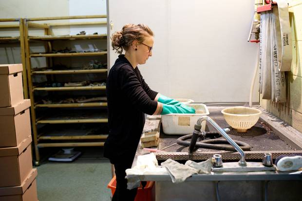 A bioarcheologist cleans items from various findings.