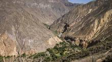 Canyon de Colca in the southern end of Peru; it's one of the deepest canyons in the world. (iStockphoto)