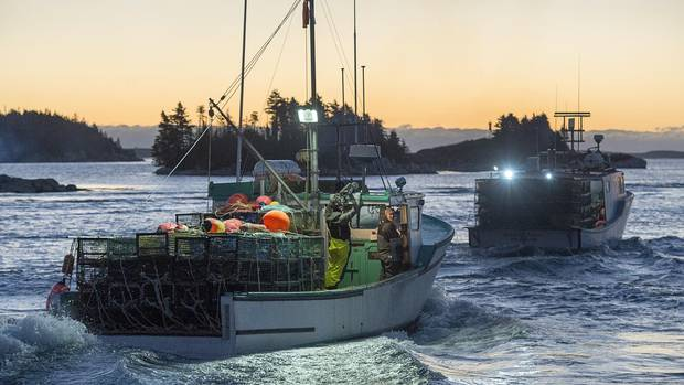 Lobster boats head from West Dover, N.S., on Nov. 29, as the lucrative lobster-fishing season on Nova Scotia's South Shore opens.